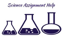 Science Assignment Help in the USA by Professionals - vnaya.com